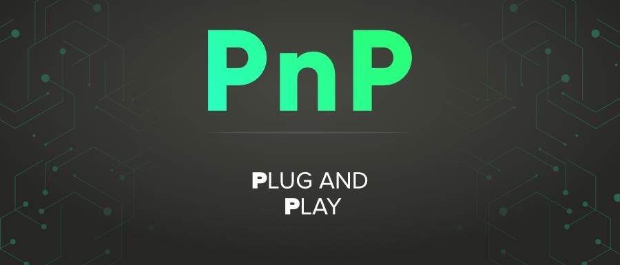 PnP-Full-Form