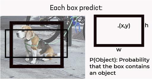 YOLO single Grid Bounding box-Box
