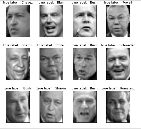 dataset_image