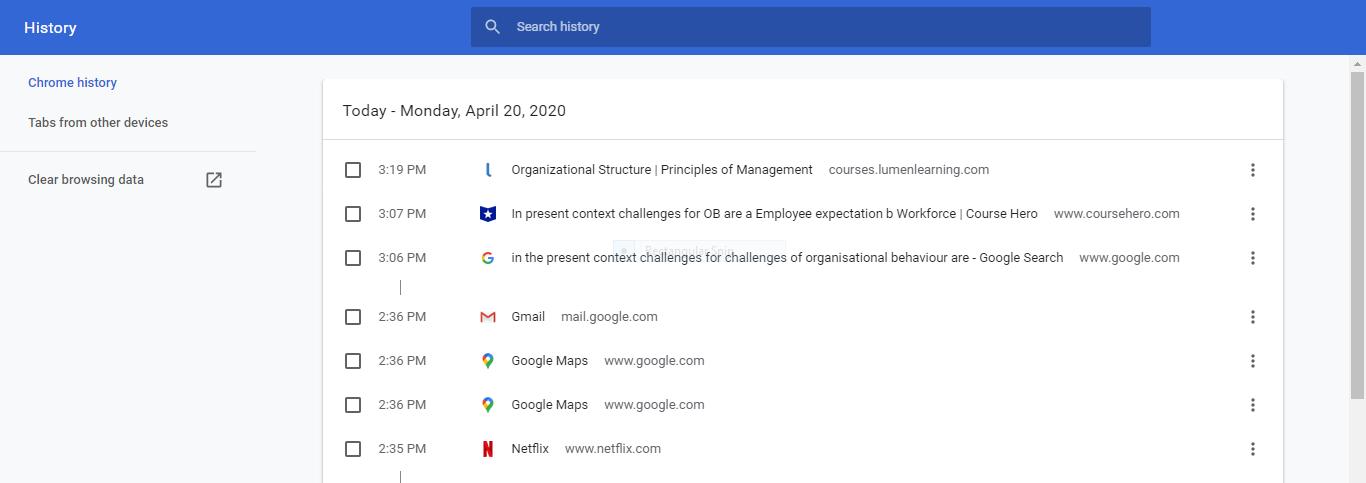 Deleting Google Chrome Browser History - 3