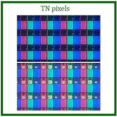 TN panel