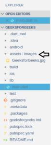 image in flutter app