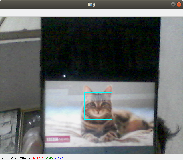 python-cat-face-detection