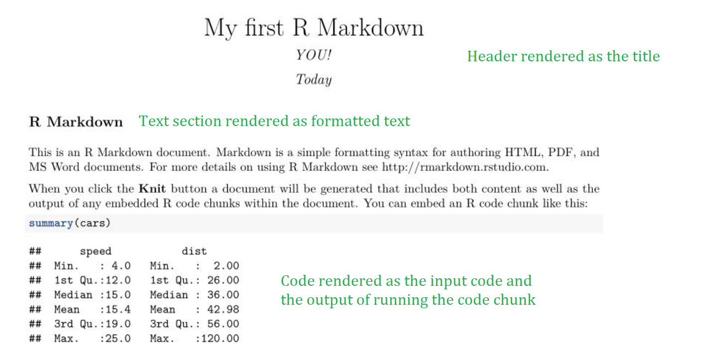 The rendered PDF you created by knitting your markdown file