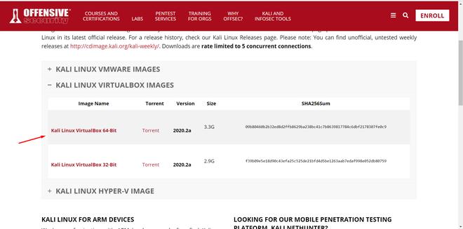 Downloading Kali Linux Virtual Box File