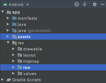 assets and raw folder