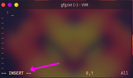 vim window