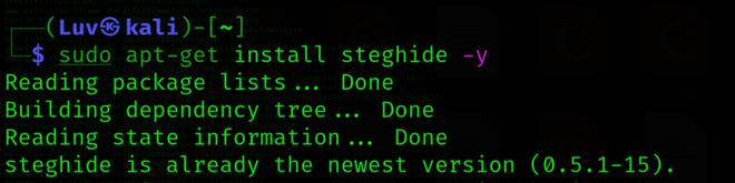 Installation of Steghide Tool in Linux
