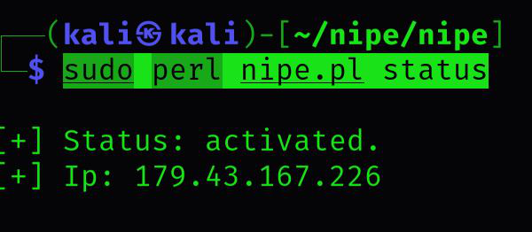 How to Install Nipe tool in Kali Linux?