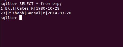 python sqlite3 insert data