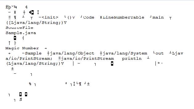 Sample.class File