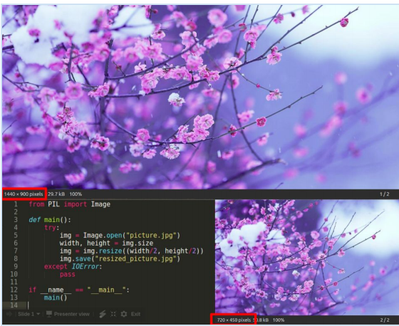 resizing an image in python